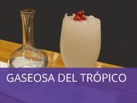 gaseosa-del-tropico