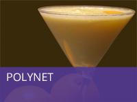 polynet1.jpg
